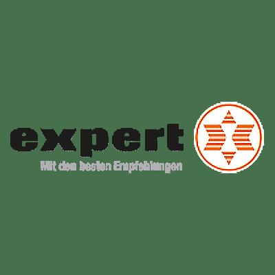 Логотип эксперта